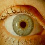 intacs-84-eye